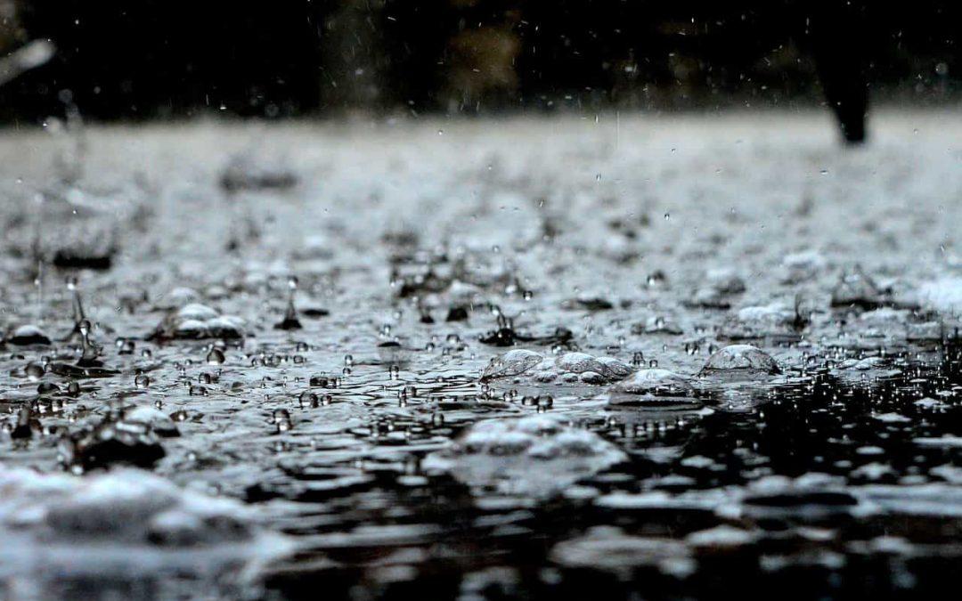 Boire de l'eau de pluie